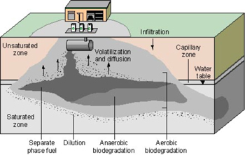 Graphic: A Cross Section View Of An Underground Oil Tank With  Biodegradation Below It